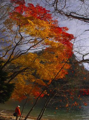 06'秋の栃窪