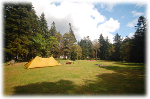 国設のキャンプ場