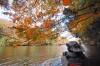 紅葉トンネル